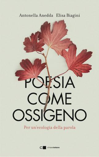 Poesia come ossigeno - Dante